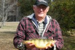 yellow-perch-record