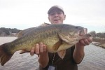 Largemouth Bass Record Delaware